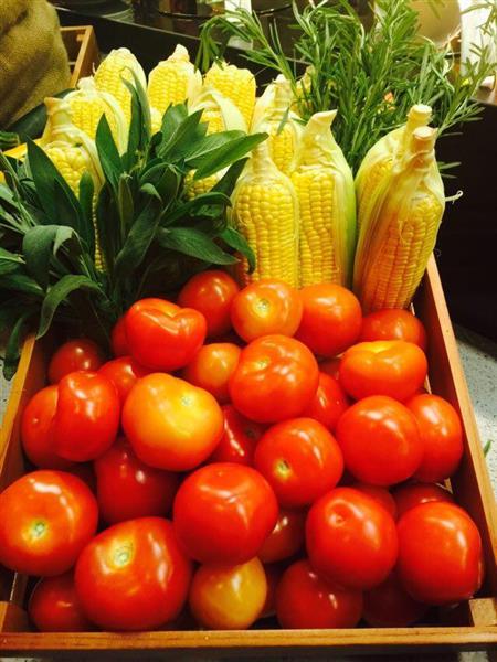 tomato jagung